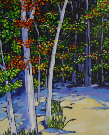 Christi Dreese beach birch trees