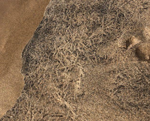 ice patterns in lake michigan beach sand