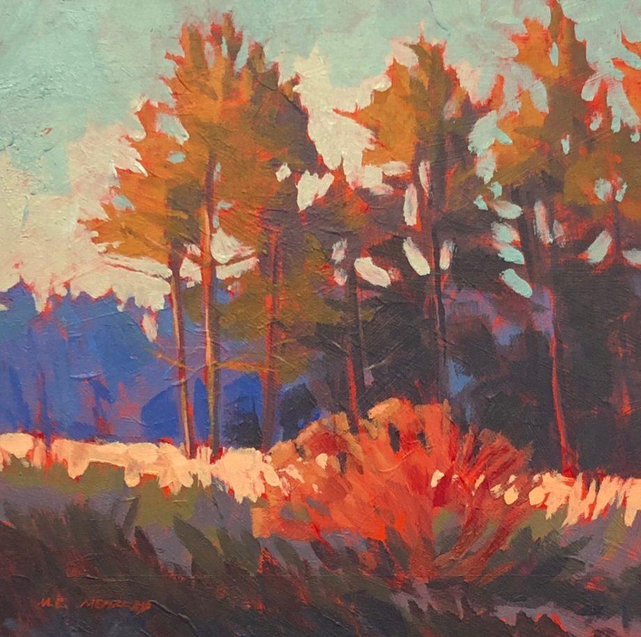 red dogwood evening light