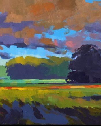 summer fields by Mark Mehaffey
