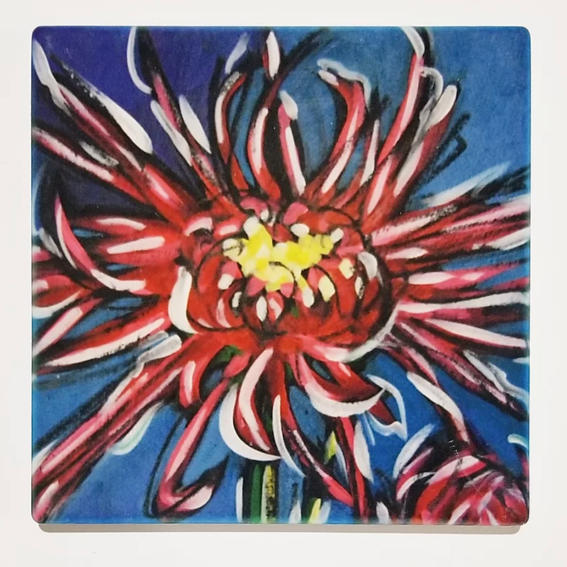 coasters featuring paintings by Christi Dreese